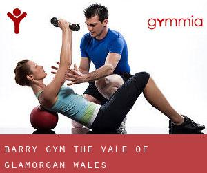 Barry gym (The Vale of Glamorgan, Wales)