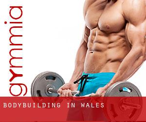 BodyBuilding in Wales