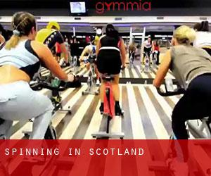 Spinning in Scotland