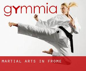 Martial Arts in Frome