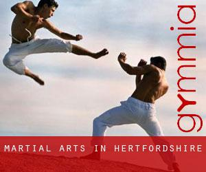 Martial Arts in Hertfordshire