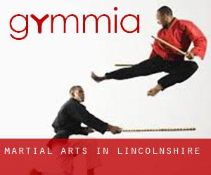 Martial Arts in Lincolnshire