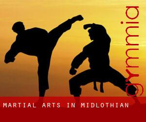 Martial Arts in Midlothian