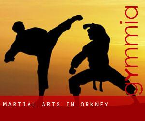 Martial Arts in Orkney