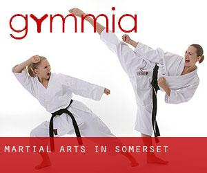 Martial Arts in Somerset
