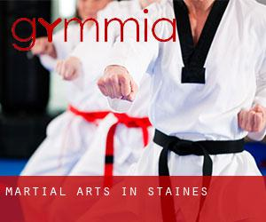Martial Arts in Staines