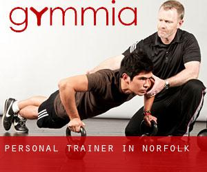 Personal Trainer in Norfolk