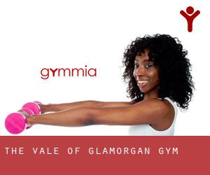 The Vale of Glamorgan gym